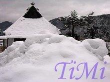 Christmas xmas dono creativo invernale artificiale istantaneo - polvere di neve neve