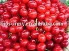 Sour cherry juice concentrates powder