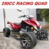 250CC RACING QUAD BIKE (MC-365)