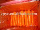 Chinese frresh carrot