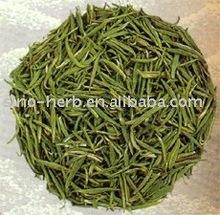 Junshan silver needle (Junshan yinzhen)