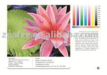 High Glossy pp paper inkjet media for Eco-solvent
