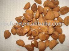 Dehydrated Garlic Clove / dried garlic clove