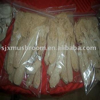 Dried bamboo shoot