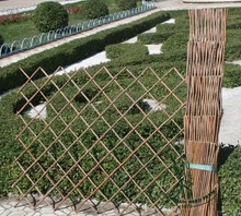 expandable willow trellis