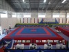 Taekwondo Equipment,ITF Tae kwon do Competition Arena