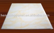 PVC panel and ceilings