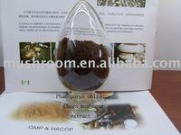 Chaga mushroom,Phaeoporus obliquus extract,powder,tea bag,capsules