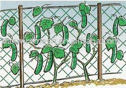 Hdpe net pepino / planta suppor neta
