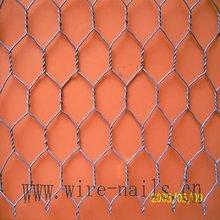 electro galvanized hexagonal wire netting