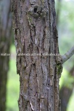 White Willow Bark Plant Extract