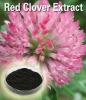 Red Clover Extract /Trifolium Pratense Isoflavone