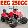 EEC 250cc Three Wheel Motorcycle