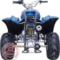 New 110cc ATV with 30 Degrees Climbing Capacity WZAT1103 EEC