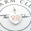 joyas de la amistad joyas encanto joyas de plata-CM65