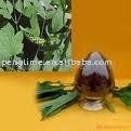 Black Cohosh Extract Triterpene 8%