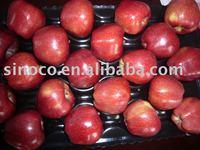 Dark Red Apple (Huaniu apple)