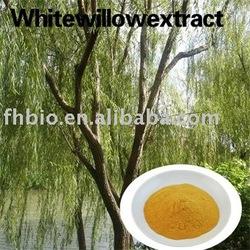 Salix Babylonica Extract for Anti-rheumatism