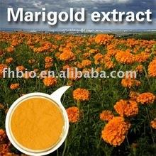 Marigold oleoresins