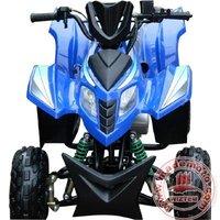 50cc Gas-Powered 4-Stroke Engine Quads Bike WZAT0509