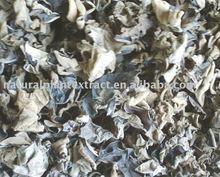 Black Wood Ear Powder
