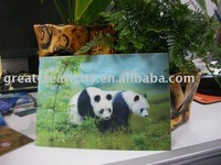 75 LPI 3d lenticular postcard printed in china factory