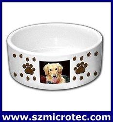 ceramics Dog Bowl