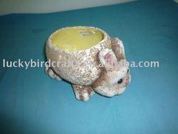 pulp rabbit container