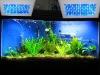 120W LED coral reef fish aquarium light