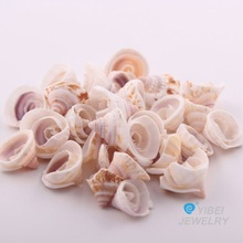 fashion/popular/hotest/newest/necklace accessory/earrings accessories/bracelet accessories/sea shell jewelry accessories