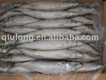 fish (300-500g frozen mackerel fish)