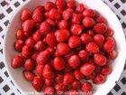 IQF frozen wild strawberry