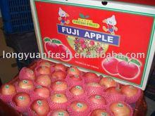 Chinese premium red Fuji apple