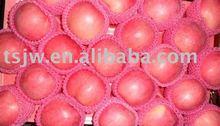 Chinese apple red Fuji apple fruit