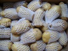 2011 fresh natural potato