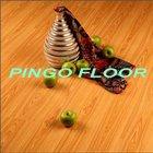 PG9068 - Pink Laminate Floor