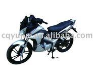 DLS 2011 popular racing bike