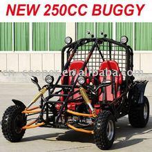 EEC 250CC BUGGY/2 Seats