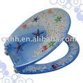 Molde plástico de la cubierta de asiento de tocador del diseño del cliente para la inyección
