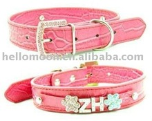fashionable collar pet leashes