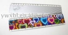 NEW lenticular 3d plastic ruler