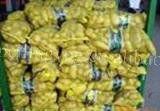 new crop farm fresh potato(good quality)