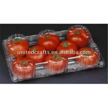 NEW ARRIVAL 2011 Hot Selling Natural Popular fruit and vegetable art and craft