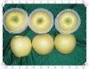 chinese fresh golden apple fruit
