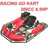 6.5HP 196CC Racing Go kart