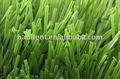 mt العشب، الليمون الأخضر