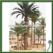 decoration palm tree