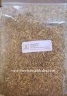 Angelica,Herb Medicine