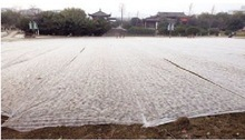 pp nonwoven fabric agriculture weed control