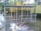 Dog fence panel
